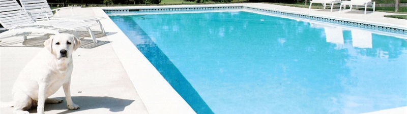12 month financing, buddy pool and spas | pool renovation, pool equipment, new pool, baltimore